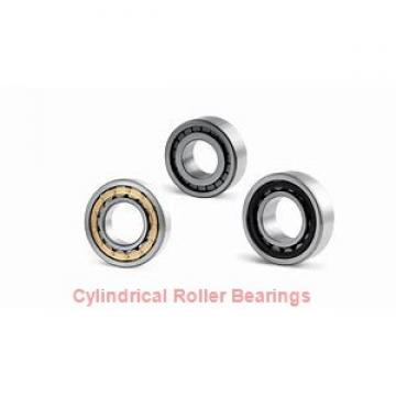 45 mm x 75 mm x 16 mm  ISB NU 1009 cylindrical roller bearings