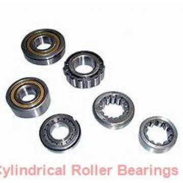 Toyana NUP319 E cylindrical roller bearings