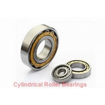 70 mm x 125 mm x 31 mm  NSK NU2214 ET cylindrical roller bearings